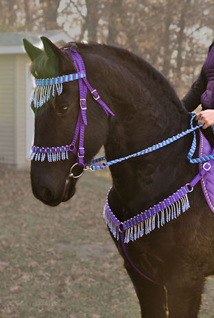 Paracord horse reins related keywords paracord horse for Paracord horse bridle